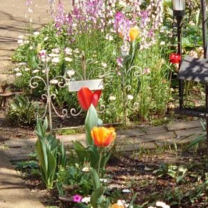 ◆春のガーデン