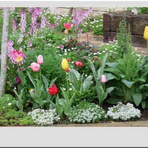 ◆花いっぱいの庭