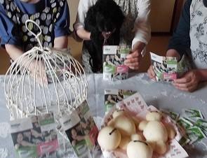 ベイマックス★愛犬チーコ★フリスクネオグレープミント !!