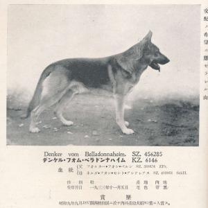 デンケル・フォン・ベナドンナハイム SZ456285 KZ6146(在郷軍用犬)