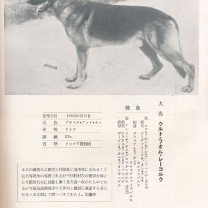 クルト・フォン・レーコック SZ404410(愛玩犬)