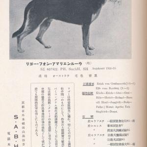 リゴー・フォン・アマリエンルーウ SZ407922(愛玩犬)