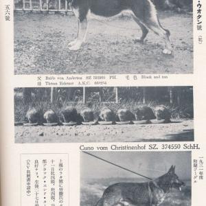 ラタ・フォム・ウォータン KZ4818★(在郷軍用犬)