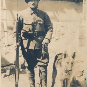 戦地のワンコ(軍犬)