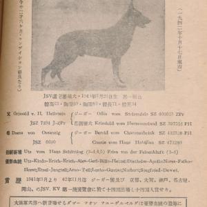 ダゴー・フォン・フューゲルベルク KZ414924★(軍用候補資格犬)