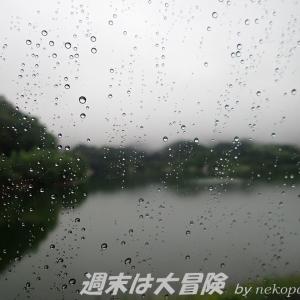 雨の日はハイエースの中で