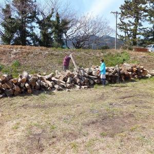 汗をかきました、富士川河川敷での薪作業