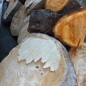 梅雨の中の薪情報 沼津市
