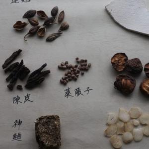 【WS募集2月7日】家庭で使える台湾漢方講座