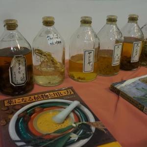 薬草の知恵を学ぶ教室@森野旧薬園:薬草狩りと薬酒づくり