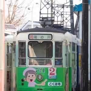 動く姿は最終日のみです(苦笑) 函館市電710形 #5