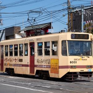 8001〜8005までです。 函館市電8000形