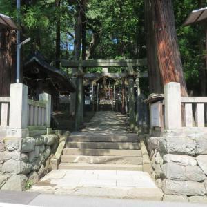 先宮神社の大欅