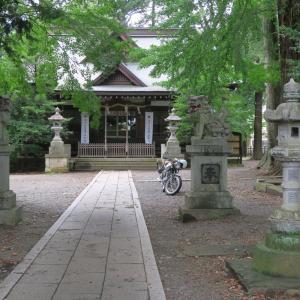 牛倉神社のスギ