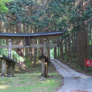 檜峯神社の大スギ