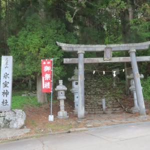 氷室神社の大杉