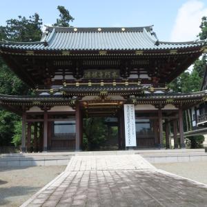 北山本門寺の題目杉