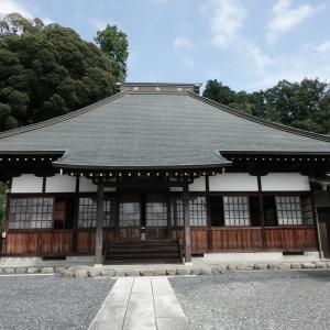 師岡神社のシイ