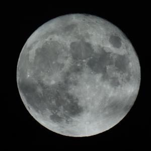 昨日の中秋の名月は魚座満月