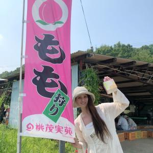 岡山「桃茂実苑 ともみえん」で もも狩り!白桃が30種!