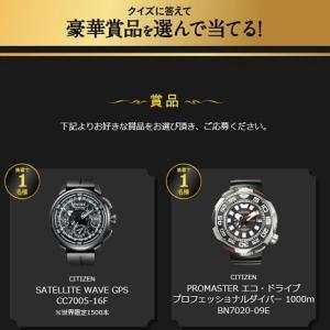 限定腕時計・選べるギフトカタログ「贅沢ホテルスパ」実感!黒の力キャンペーン