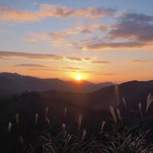 延岡ふるさと里山のチカラ再発見写真館NO 2056