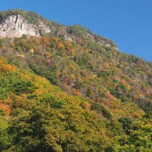 延岡ふるさと里山のチカラ再発見写真館NO 2087