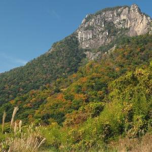 延岡ふるさと里山のチカラ再発見写真館NO 2094