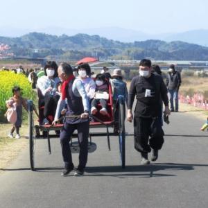 延岡ふるさと里山のチカラ再発見写真館NO 2165