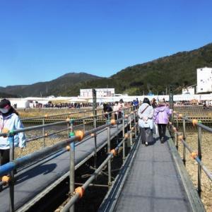延岡ふるさと里山のチカラ再発見写真館NO 2167