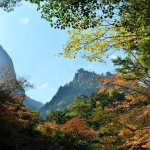 延岡ふるさと里山のチカラ再発見写真館NO 2319