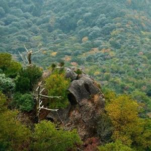 延岡ふるさと里山のチカラ再発見写真館NO 2339