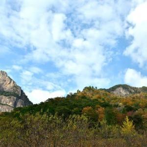 延岡ふるさと里山のチカラ再発見写真館NO 2341
