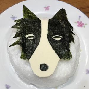 豆腐ケーキ忘れてたの。
