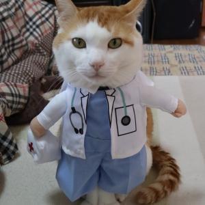 テツ君に元気玉♪ドクタージョナサン