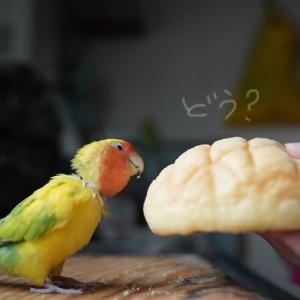 「朝食」らしい。