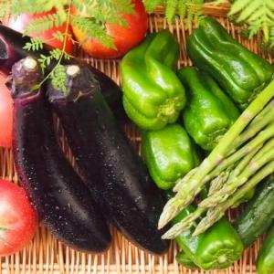 夏野菜たっぷりアジア風
