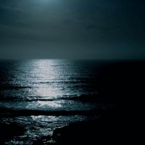 ウミガメの涙と月光ソナタ