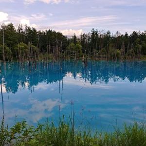 幾重もの偶然が重なった自然のハーモニー / 青い池