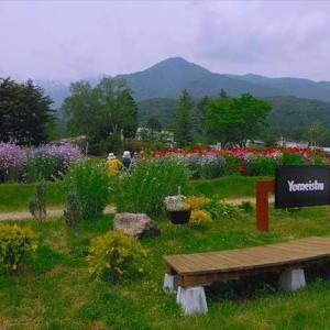 ★ハーブの庭 .。oO