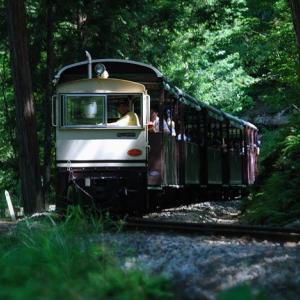 ★夏の赤沢自然休養林Vol.3 .。oO