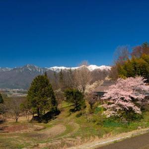 ★ふるさと桜の原風景 .。oO