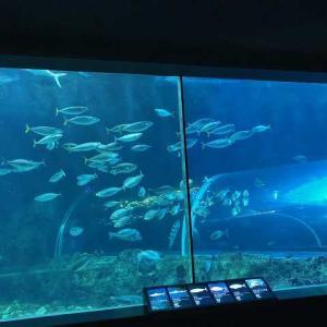 「新潟市水族館マリンピア日本海」行って来ました。