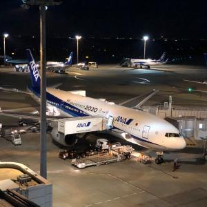 夜の羽田空港に行ってきました。