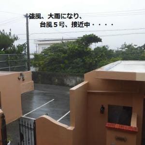 台風5号!!