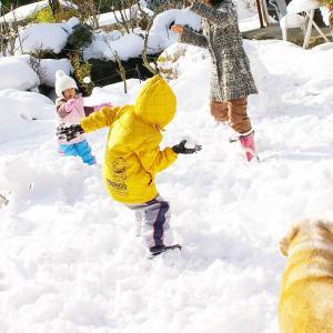 一面真っ白の雪を見て3歳の娘が言ったのは?