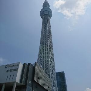 東京は34.5℃でした。