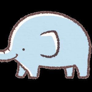 象の夢は誰の夢?