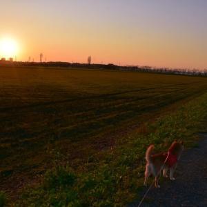久しぶりに夕日を見に行きました