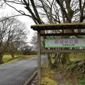 桜城址公園